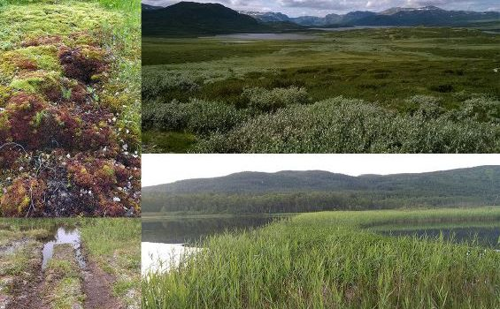 MERE Om Verdien Av økosystemtjenester På Samisk Senter Ved UiT-Norges Arktiske Universitet