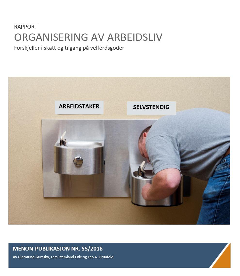 Organisering Av Arbeidsliv